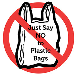 say no to plastic essay